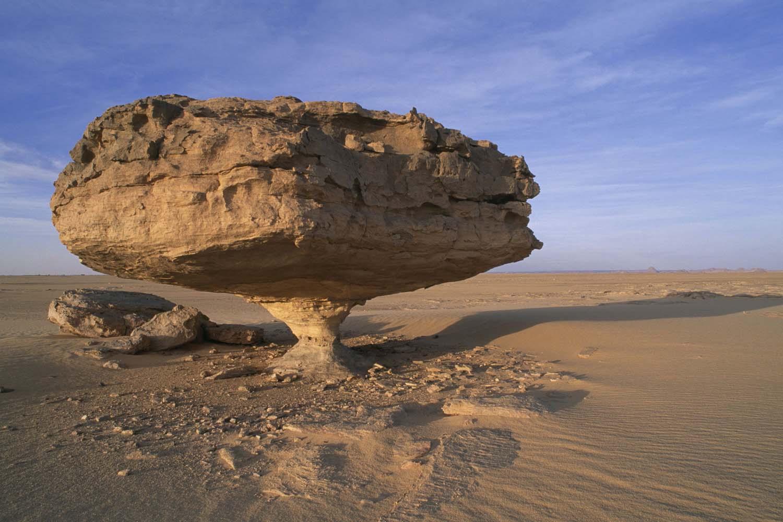 A wind eroded rock in the Tenere Desert.