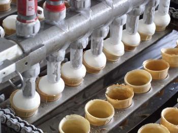 illustrates the process plant